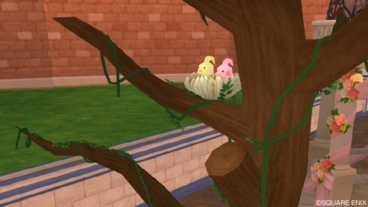 小鳥の止まり木の畑