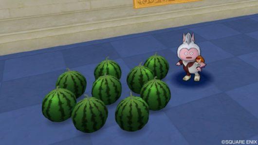 「おうち用旬のスイカ」「お庭用旬のスイカ」