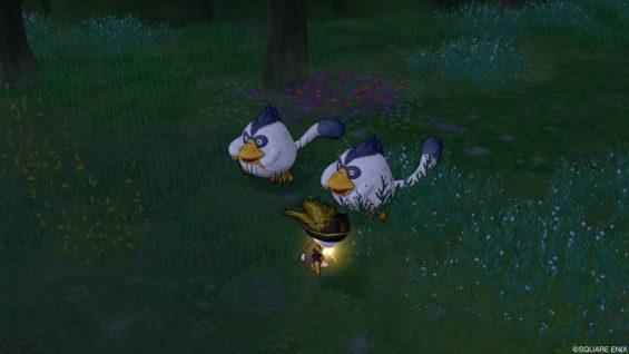 ももんじゃ 大地の羽毛