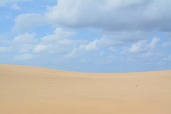 砂漠の写真