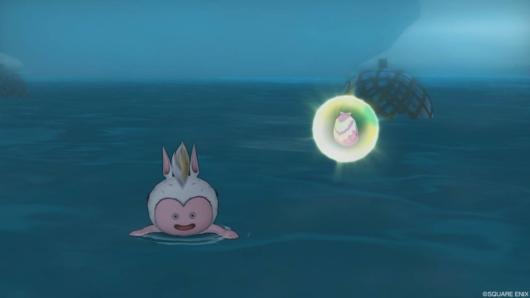 海イベント「キミとサメない夢を」のアワウキ貝