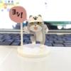 組み立てた「仕事猫」のガチャポン